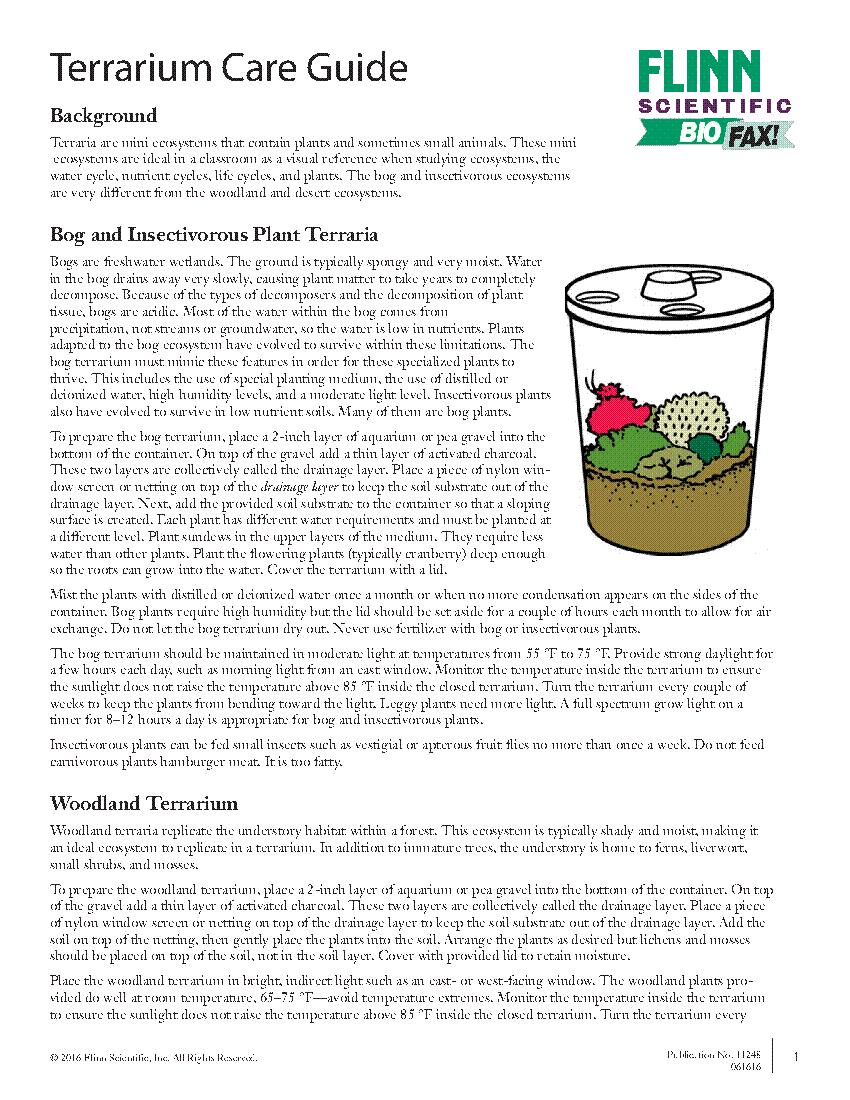 Terrarium Care Guide
