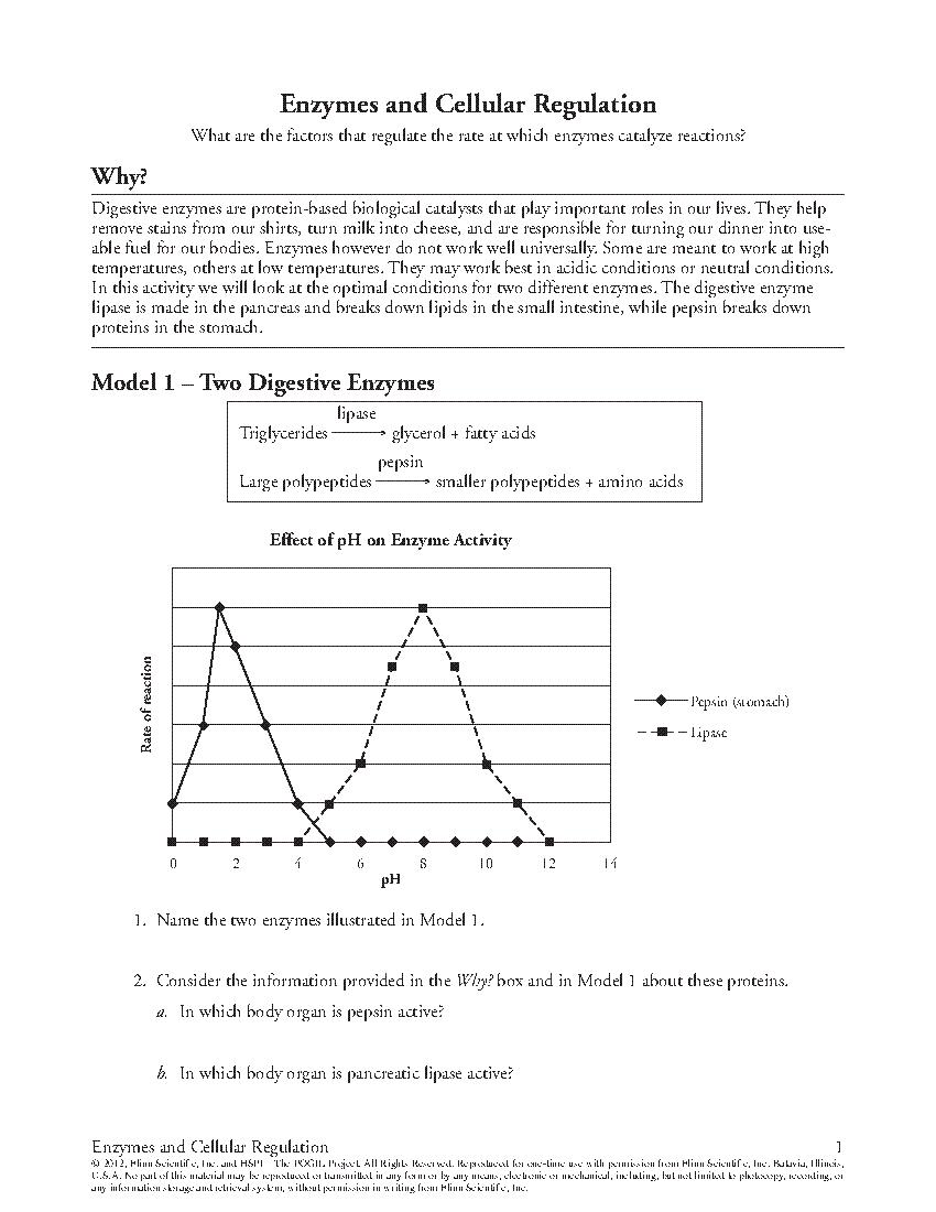 Ap biology worksheets pdf